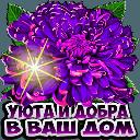 https://dp.mycdn.me/getImage?photoId=838597688488&type=4